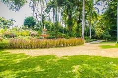 Jardín verde del parque público del verano con el cielo azul en el día nublado Luz hermosa del día en parque público con el campo Fotografía de archivo
