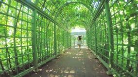 Jardín verde del verano de los cuartos almacen de video