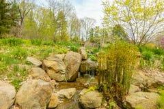 Jardín verde enorme foto de archivo libre de regalías