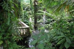 Jardín verde hermoso Fotos de archivo