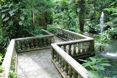 Jardín verde hermoso Imagen de archivo libre de regalías