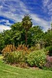 Jardín vibrante fotografía de archivo libre de regalías