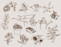 Jardín y accesorios stock de ilustración