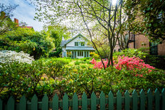 Jardín y casa hermosos en la colina de Bolton, Baltimore, Maryland imágenes de archivo libres de regalías