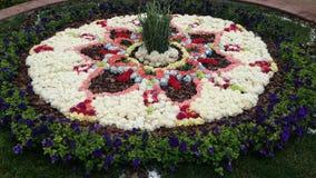 Jardín y flores Fotos de archivo libres de regalías