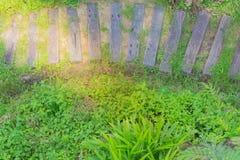 Jardín y madera delanteros Foto de archivo