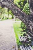 Jardín y solamente Foto de archivo libre de regalías