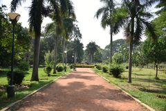 Jard?n bot?nico de Lalbagh, Bangalore, Karnataka imagen de archivo