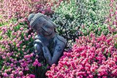 Jard?n pac?fico Ornamento sereno tradicional de la estatua de Buda con las flores hermosas fotografía de archivo libre de regalías