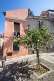 Jarda com árvores e a casa cor-de-rosa, Sassari, Itália fotografia de stock