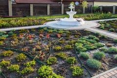 Jarda com fonte e as plantas plantadas frescas Foto de Stock