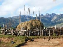 Jarda de exploração agrícola rural em Madagascar Foto de Stock Royalty Free
