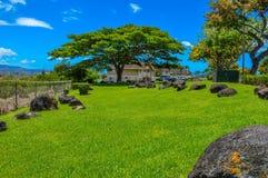Jarda verde Imagens de Stock Royalty Free