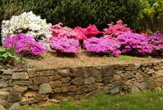 Jardim Imagens de Stock Royalty Free