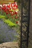 Jardim Fotos de Stock Royalty Free