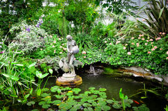 Jardim Fotos de Stock