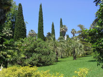 Jardim. imagens de stock
