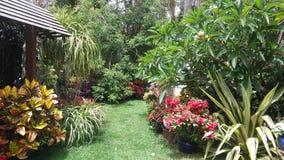 Jardim Imagens de Stock