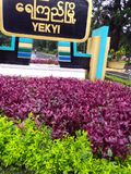 Jardim Fotografia de Stock Royalty Free