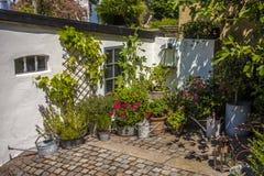 Jardim acolhedor com flores Fotos de Stock Royalty Free