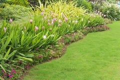 Jardim ajardinado com flor Imagens de Stock