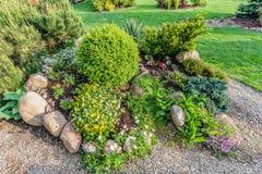 Jardim ajardinado do verão com plantas verdes, rochas, flores nos canteiros de flores, grama segada Imagem de Stock Royalty Free