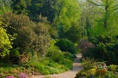 Jardim alpino, DES Plantes de Jardin, Paris Foto de Stock Royalty Free