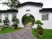 Jardim & bonsais chineses Imagens de Stock Royalty Free
