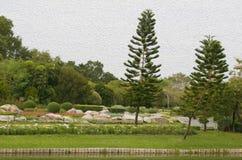 Jardim ao ar livre da paisagem Imagem de Stock