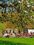 Jardim bávaro romântico da cerveja na mola Imagem de Stock Royalty Free