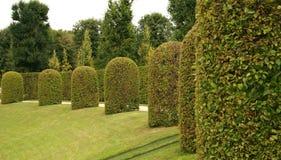 Jardim barroco fotografia de stock