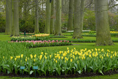 Jardim bonito Fotos de Stock
