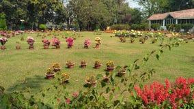Jardim bonito Imagem de Stock