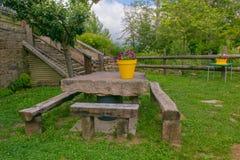 Jardim bonito do verão ou da mola com flores fotos de stock royalty free