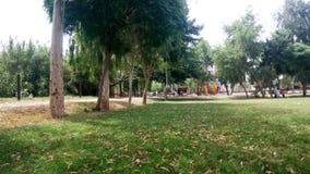 Jardim bonito e surpreendente Fotografia de Stock