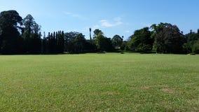 Jardim bonito em Sri Lanka Fotos de Stock Royalty Free