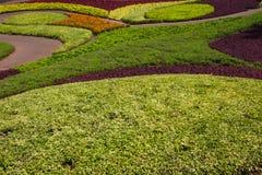 Jardim bonito em Tailândia Imagens de Stock