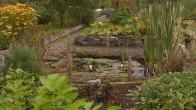 Jardim bonito na Irlanda video estoque