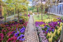 Jardim bonito na mola, Taman Botani Negara Shah Alam, Malásia Fotografia de Stock