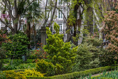 Jardim bonito no meio de uma cidade Foto de Stock Royalty Free