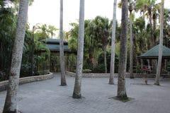 Jardim botânico, área pavimentada no Instituto de Tecnologia de Florida, Melbourne Florida imagens de stock