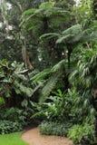 Jardim botânico Fotografia de Stock