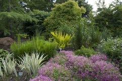 Jardim botânico agradável Fotografia de Stock