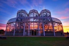 Jardim botânico, Curitiba, Brasil imagem de stock royalty free