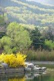Jardim botânico de Beijing Imagem de Stock Royalty Free