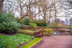 Jardim botânico de Keukenhof no tempo de mola adiantado Imagens de Stock