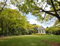 Jardim botânico de Singapura Fotos de Stock Royalty Free