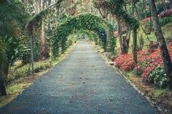 Jardim botânico Else Kientlzer imagens de stock royalty free