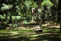 Jardim botânico em Bali imagem de stock