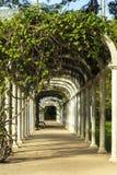Jardim botânico em Rio de janeiro Fotos de Stock Royalty Free